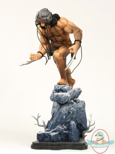 Marvel Wolverine Weapon X Lab Wired 14 Quot Statue By Bowen