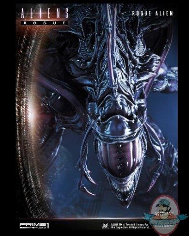 2020_08_31_15_33_21_premium_masterline_aliens_comics_rogue_alien_battle_diorama_by_prime_1_studi.jpg