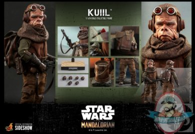2021_07_06_11_50_35_kuiil_sixth_scale_collectible_figure_by_hot_toys_sideshow_collectibles.jpg