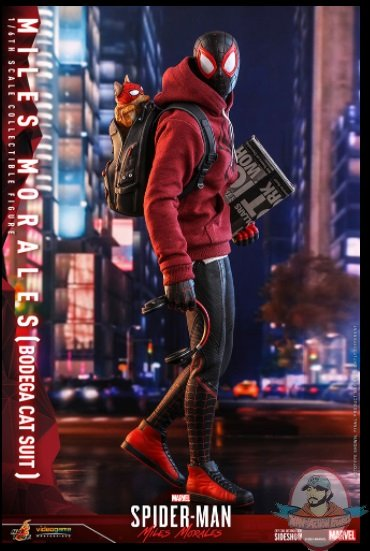 2021_07_07_09_02_53_miles_morales_bodega_cat_suit_sixth_scale_collectible_figure_by_hot_toys_sid.jpg