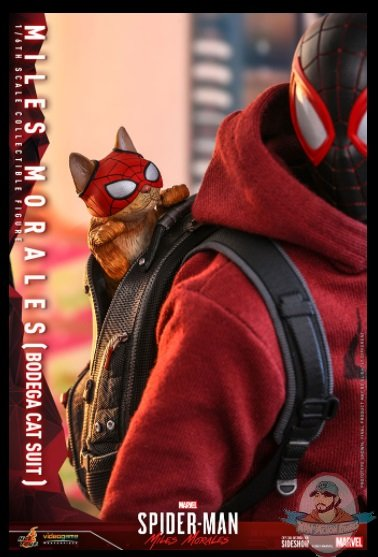 2021_07_07_09_03_32_miles_morales_bodega_cat_suit_sixth_scale_collectible_figure_by_hot_toys_sid.jpg
