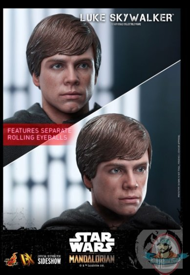 2021_09_09_11_47_00_luke_skywalker_sixth_scale_collectible_figure_by_hot_toys_sideshow_collectible.jpg