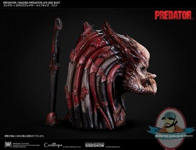 kagero-predator-life-size-bust-coolprops-904233-08.jpg