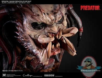 kagero-predator-life-size-bust-coolprops-904233-19.jpg