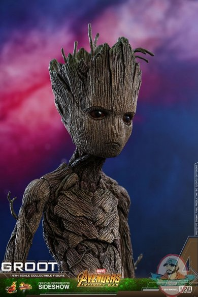 marvel-avengers-infinity-war-groot-sixth-scale-figure-hot-toys-903423-09.jpg