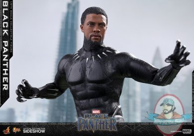 marvel-black-panther-sixth-scale-figure-hot-toys-903380-06.jpg