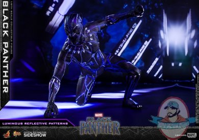 marvel-black-panther-sixth-scale-figure-hot-toys-903380-16.jpg